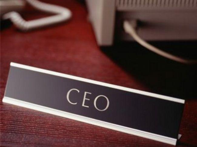 .CEO domännamn