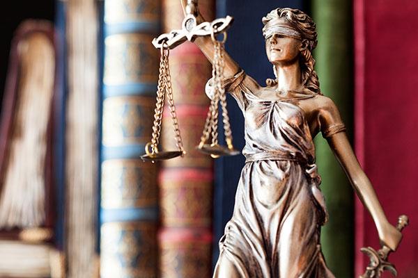 Domänjuridik